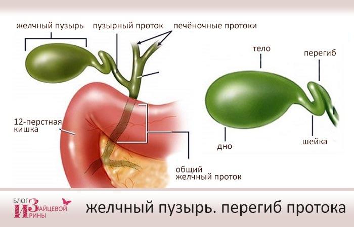 Симптомы перегиба желчного пузыря. Причины перегиба желчного ...