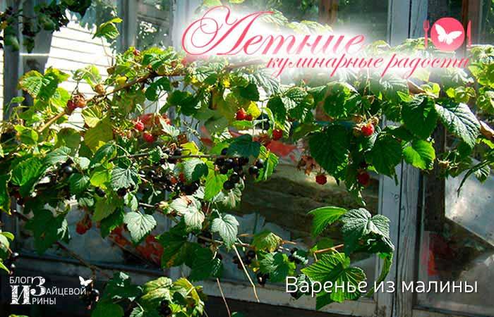 Варенье из малины