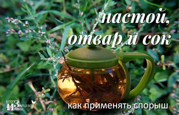 спорыш чай