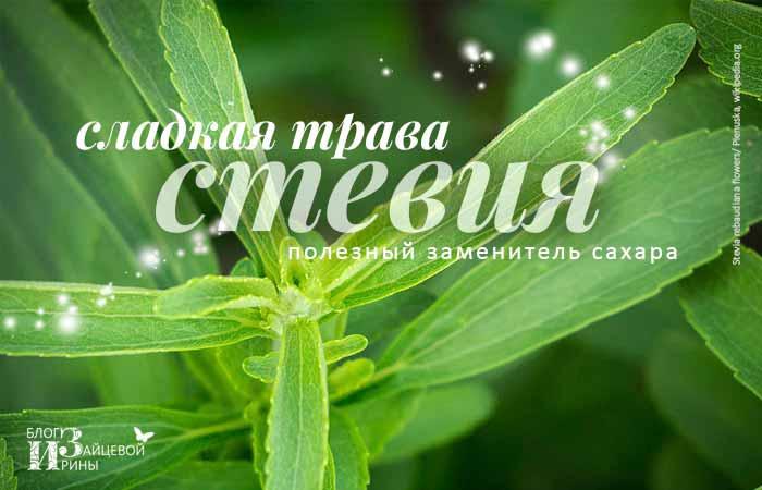 /steviya.html