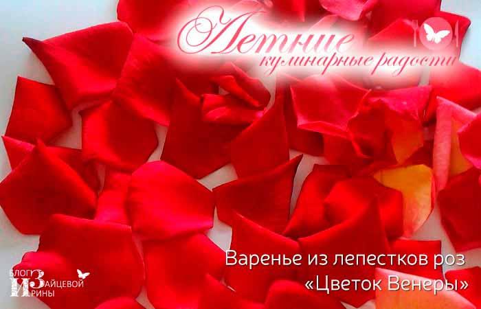 Ингредиенты варенья из лепестков розы