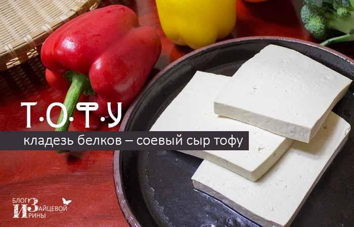 /syr-tofu.html