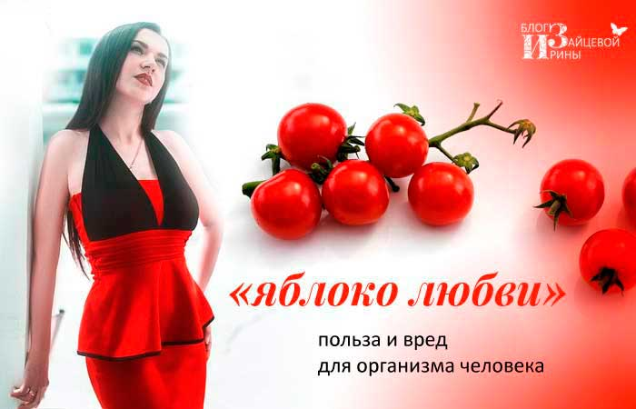 /pomidory-polza-i-vred-dlya-organizma-cheloveka.html