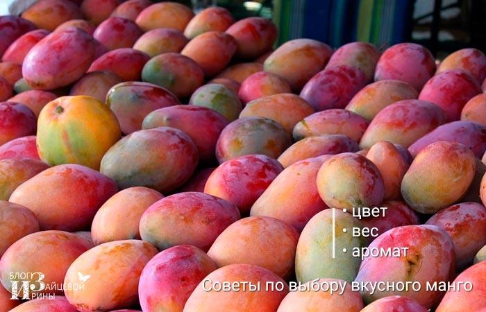 Советы по выбору манго