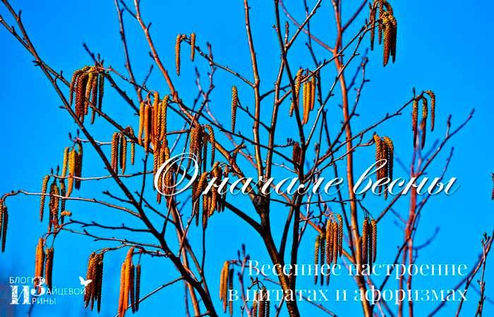 цитаты про начало весны