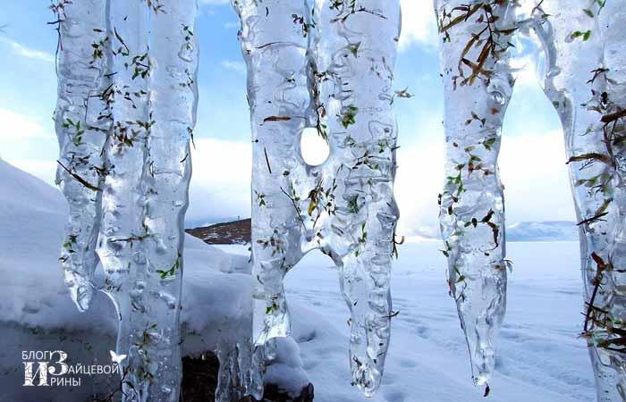 приметы зимы для школьников