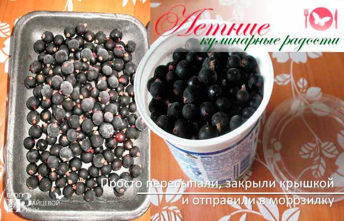Как заморозить черную смородину фото 4
